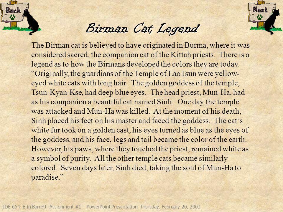 IDE 654 Erin Barrett Assignment #1 – PowerPoint Presentation Thursday, February 20, 2003 Mima Sinh Birman Cats Zimri