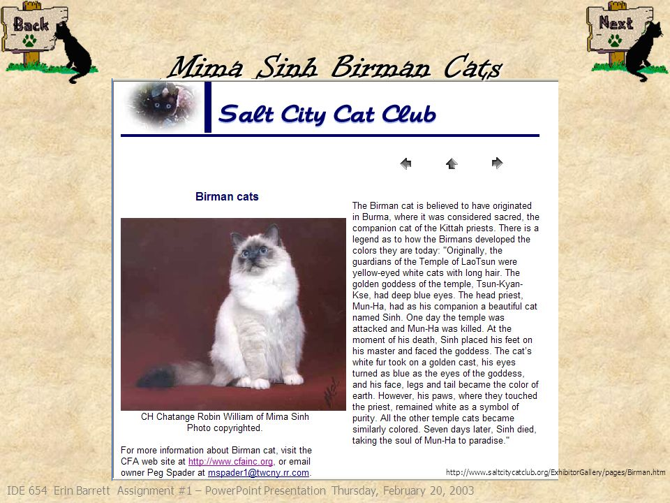 IDE 654 Erin Barrett Assignment #1 – PowerPoint Presentation Thursday, February 20, 2003 Mima Sinh Birman Cats Started caring for a Birman cat almost 2 years ago.