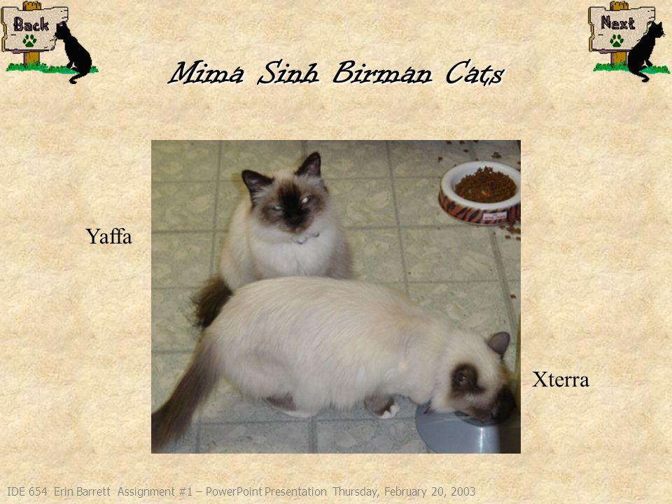 IDE 654 Erin Barrett Assignment #1 – PowerPoint Presentation Thursday, February 20, 2003 Mima Sinh Birman Cats Yaffa Xterra