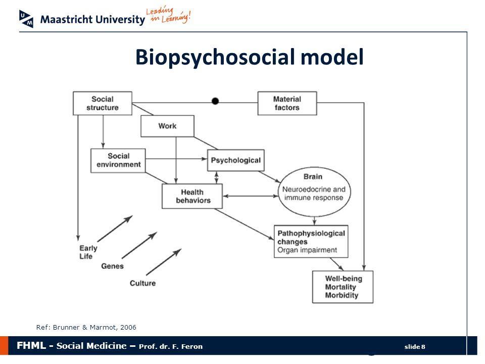 FHML - Social Medicine – Prof. dr. F.