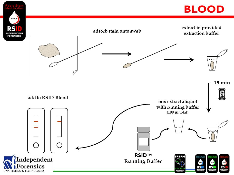 SPERM HYLITER BLOOD 15 min adsorb stain onto swab extract in provided extraction buffer RSID TM Running Buffer mix extract aliquot with running buffer (100  l total) add to RSID-Blood