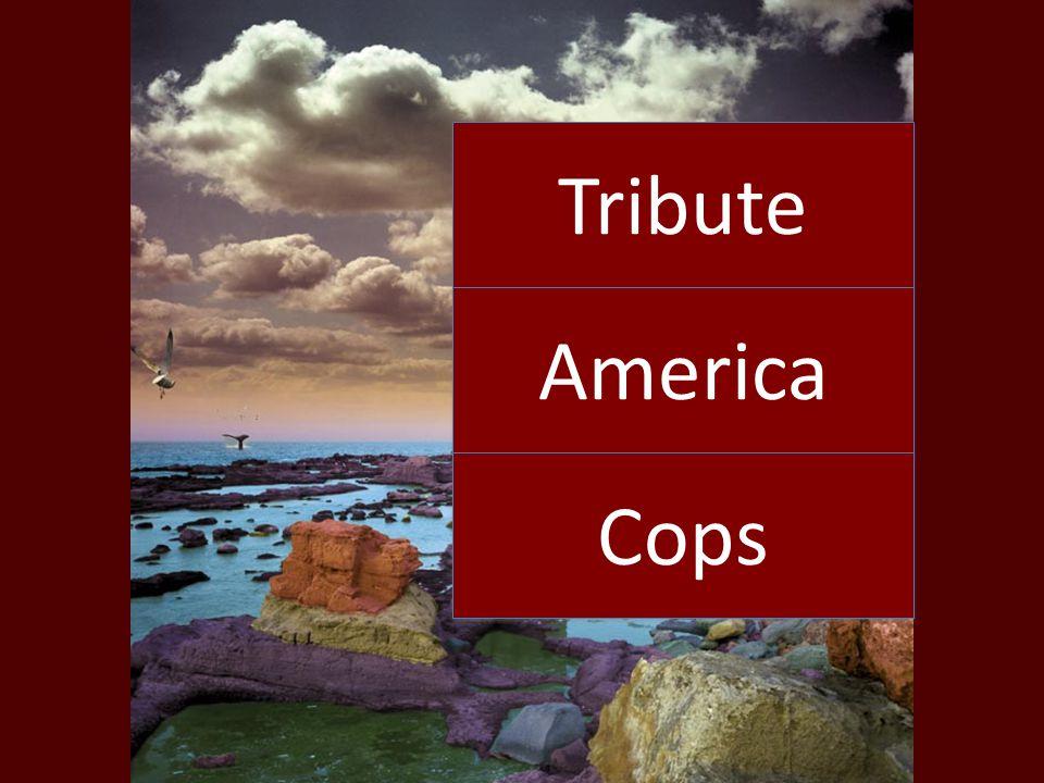 Tribute America Cops