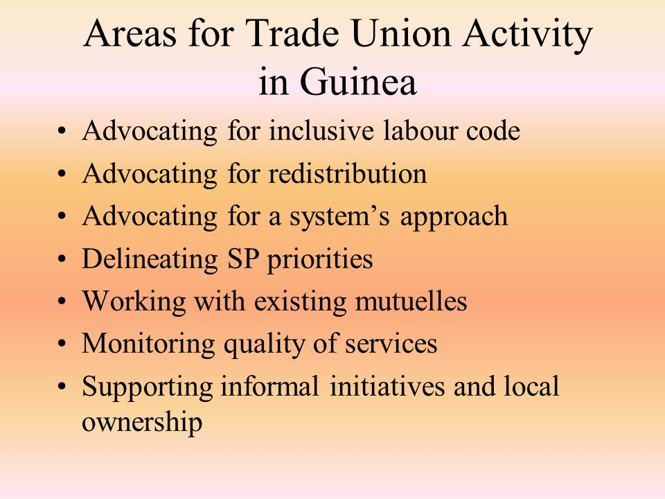 Areas for Trade Union Activity in Guinea Advocating for inclusive labour code Advocating for redistribution Advocating for a system's approach Delineating SP priorities Working with existing mutuelles Monitoring quality of services Supporting informal initiatives and local ownership