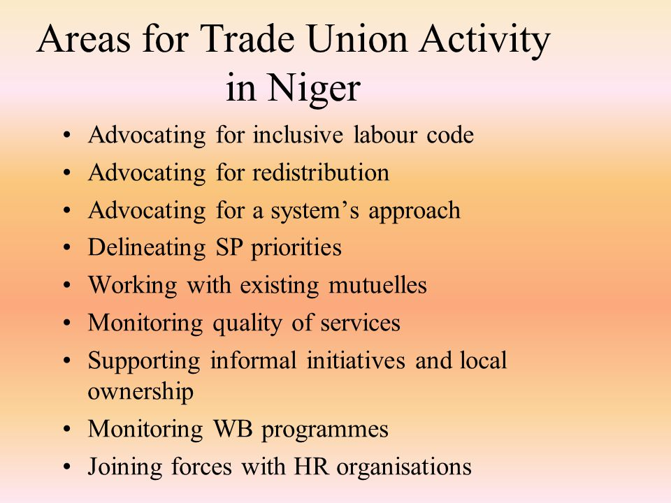 Areas for Trade Union Activity in Niger Advocating for inclusive labour code Advocating for redistribution Advocating for a system's approach Delineating SP priorities Working with existing mutuelles Monitoring quality of services Supporting informal initiatives and local ownership Monitoring WB programmes Joining forces with HR organisations