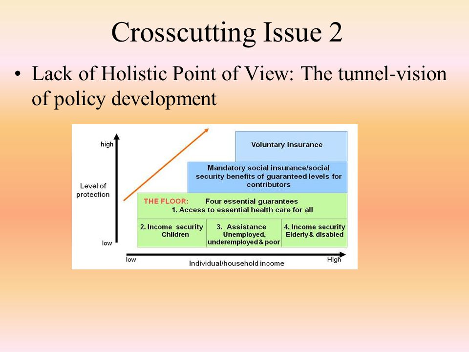 Crosscutting Issue 2 Lack of Holistic Point of View: The tunnel-vision of policy development