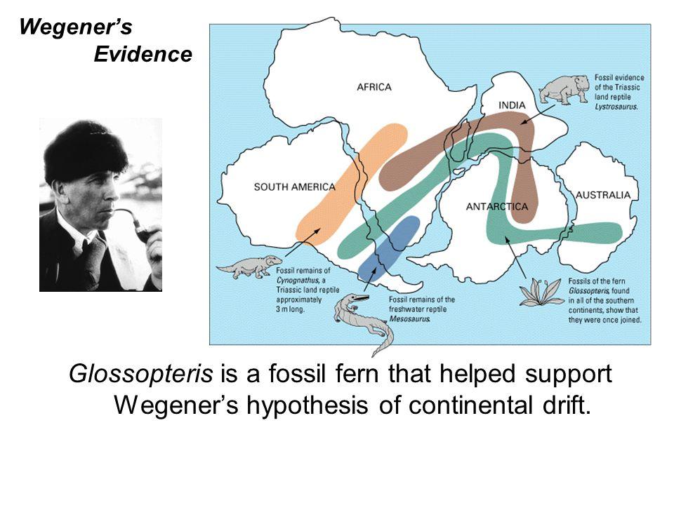 Isostatic Rebound When mountains erode, their roots decrease in size.