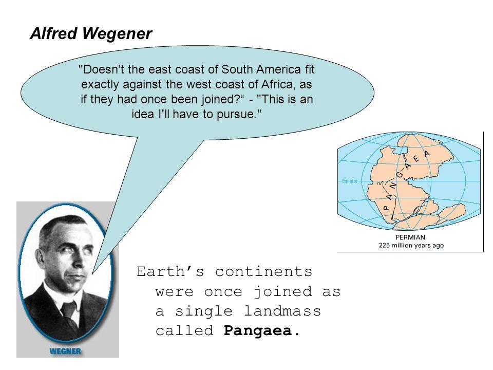 Pangea The Argyle Sweater 3/11/11