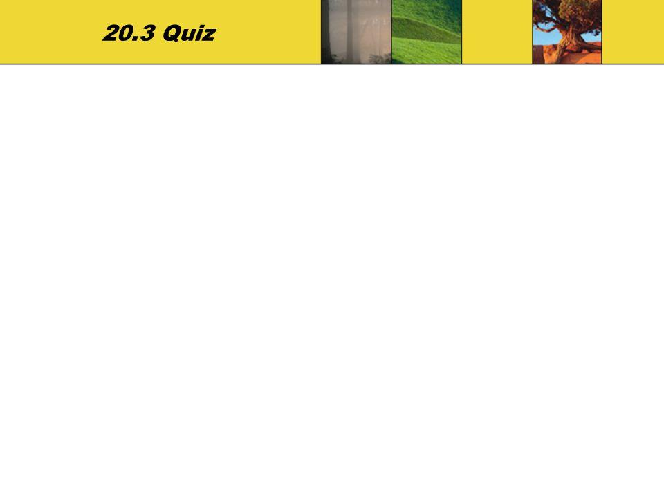 20.3 Quiz