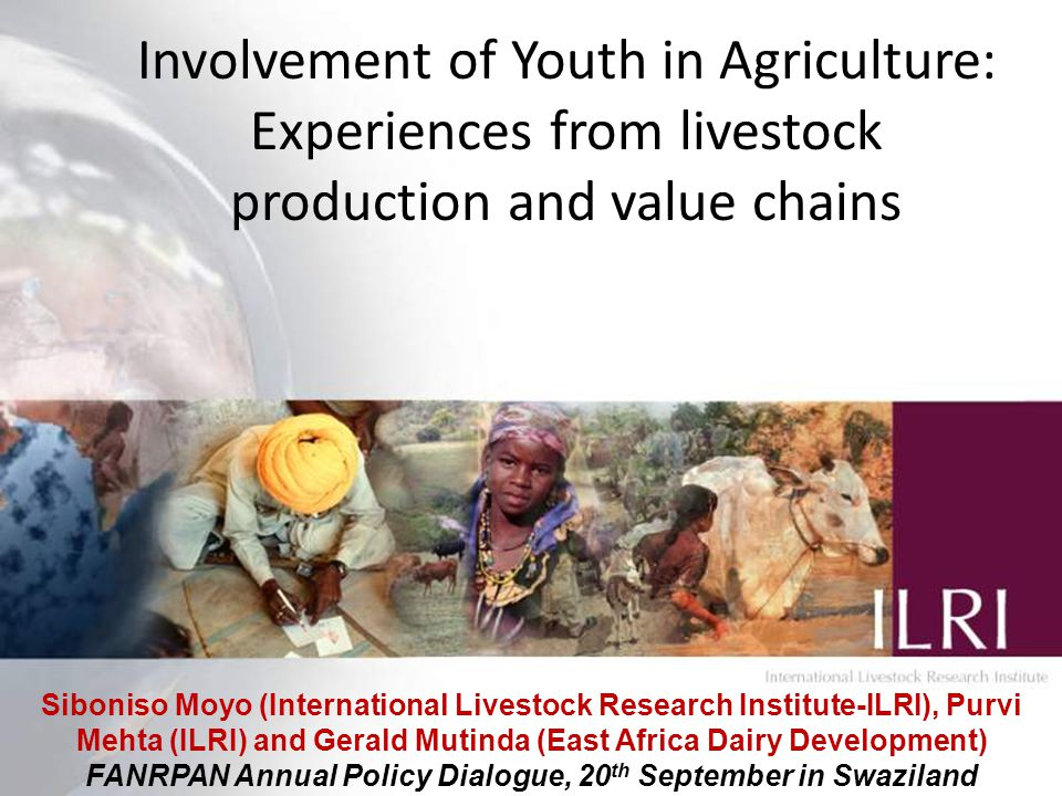 1 Involvement of Youth in Agriculture: Experiences from livestock production and value chains Siboniso Moyo (International Livestock Research Institute-ILRI), Purvi Mehta (ILRI) and Gerald Mutinda (East Africa Dairy Development) FANRPAN Annual Policy Dialogue, 20 th September in Swaziland