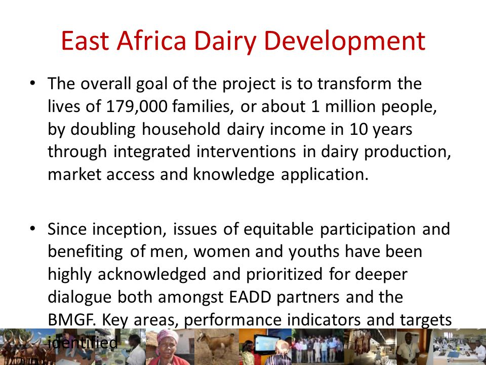 East Africa Dairy Development The overall goal of the project is to transform the lives of 179,000 families, or about 1 million people, by doubling household dairy income in 10 years through integrated interventions in dairy production, market access and knowledge application.