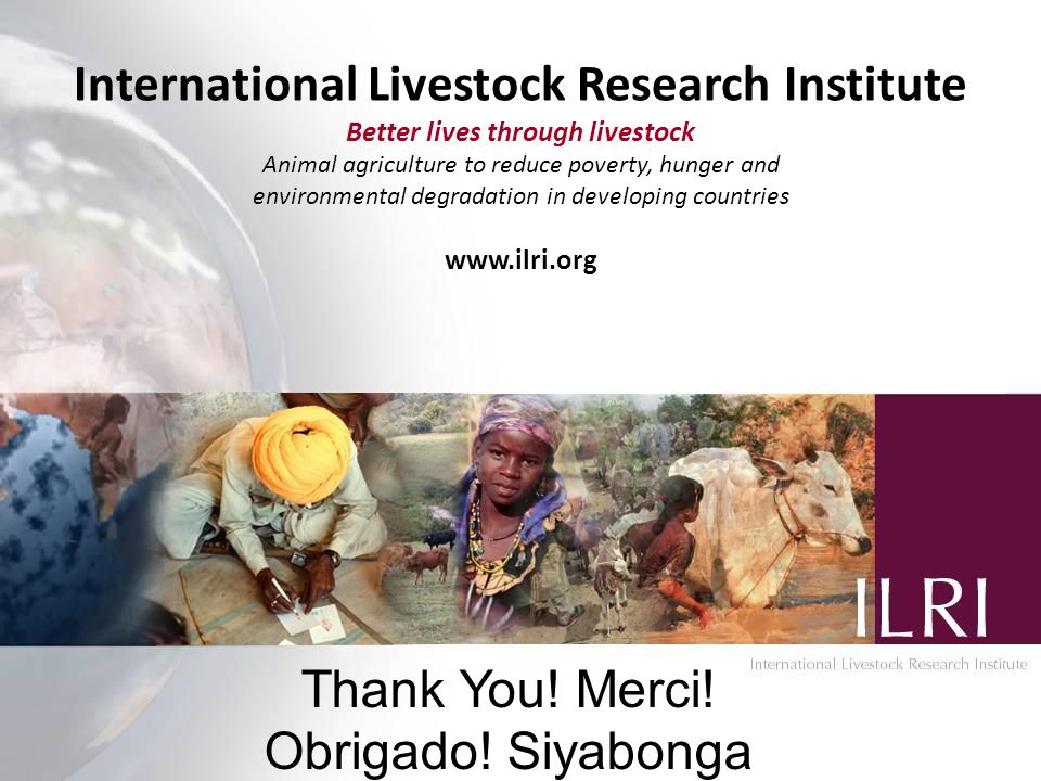 International Livestock Research Institute Better lives through livestock Animal agriculture to reduce poverty, hunger and environmental degradation in developing countries www.ilri.org Thank You.