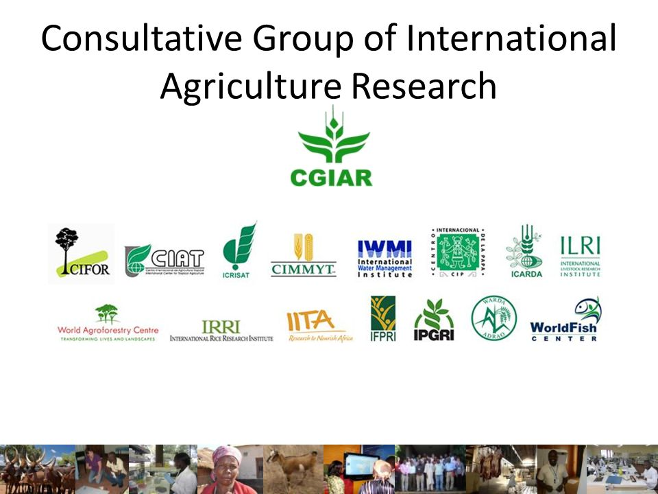Consultative Group of International Agriculture Research