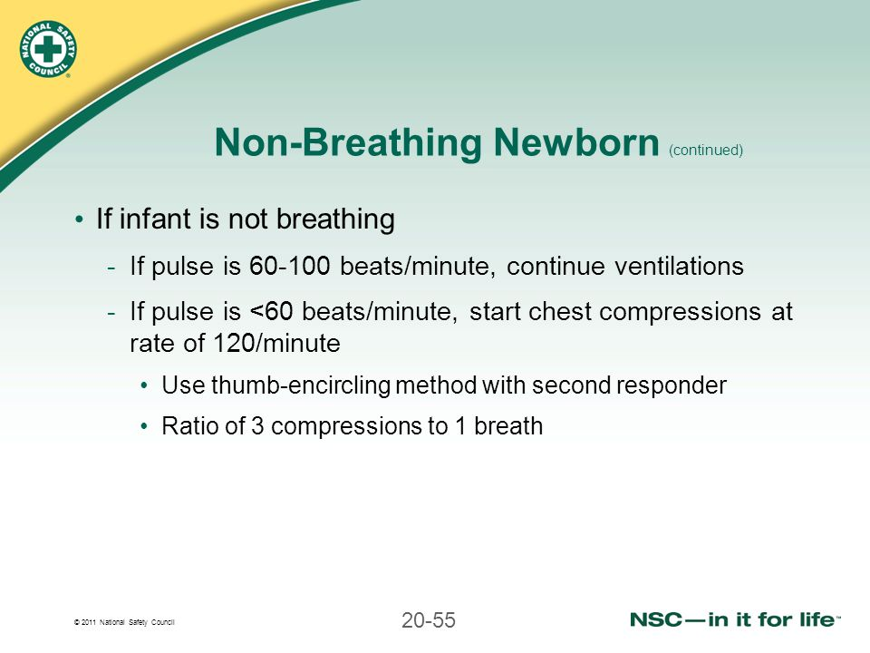 © 2011 National Safety Council 20-55 Non-Breathing Newborn (continued) If infant is not breathing -If pulse is 60-100 beats/minute, continue ventilati