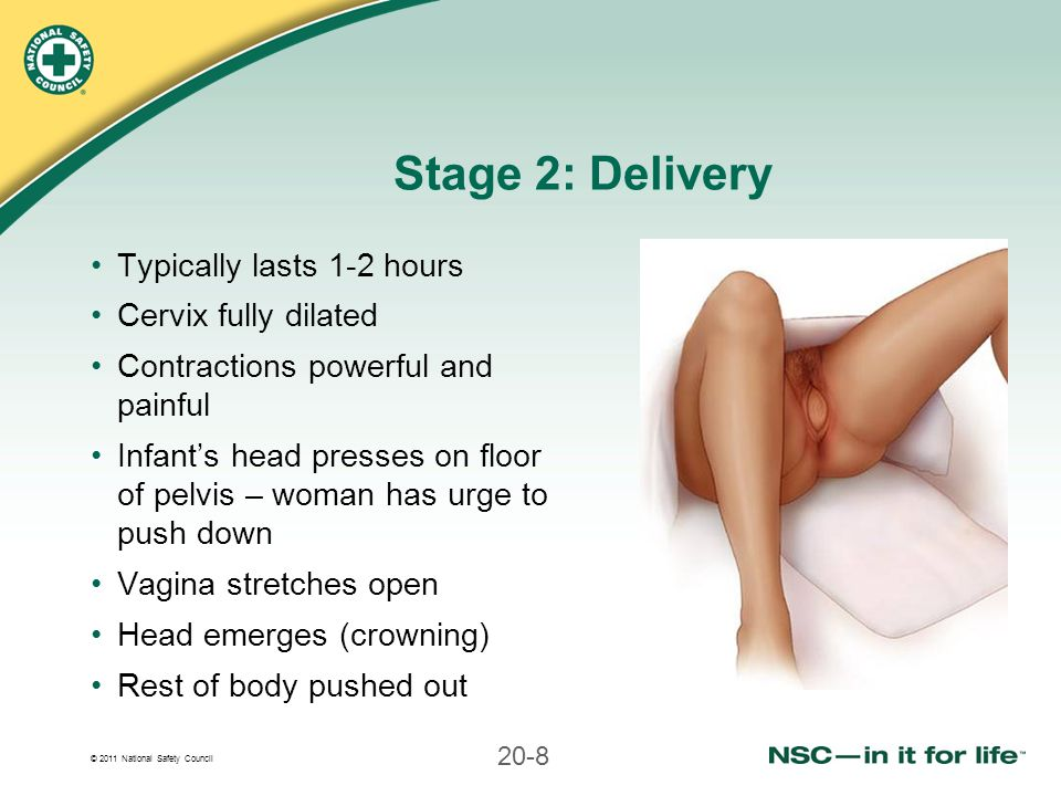 © 2011 National Safety Council 20-8 Stage 2: Delivery Typically lasts 1-2 hours Cervix fully dilated Contractions powerful and painful Infant's head p