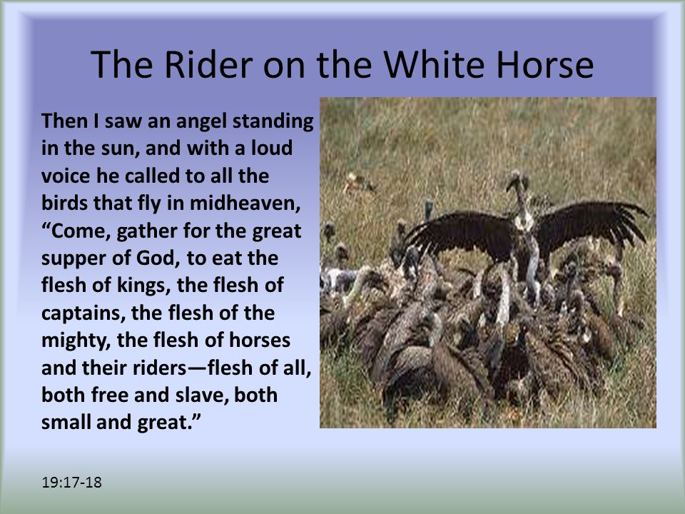 The Rider on the White Horse Then I saw an angel standing in the sun, and with a loud voice he called to all the birds that fly in midheaven, Come, gather for the great supper of God, to eat the flesh of kings, the flesh of captains, the flesh of the mighty, the flesh of horses and their riders—flesh of all, both free and slave, both small and great. 19:17-18