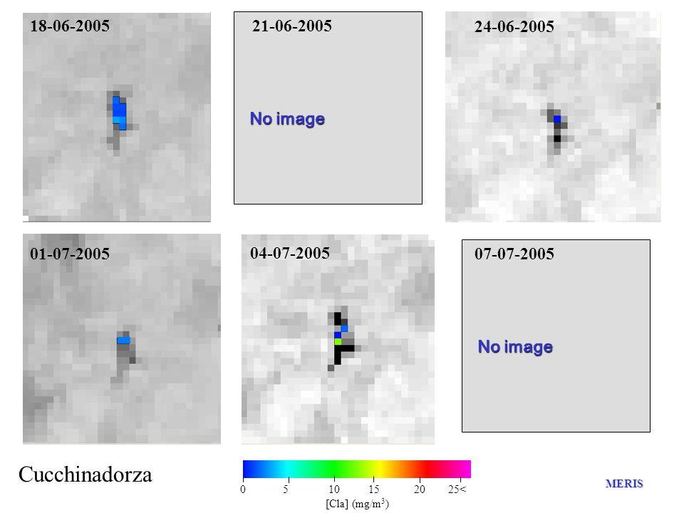 No image 18-06-2005 Cucchinadorza 21-06-2005 24-06-2005 01-07-2005 04-07-2005 07-07-2005 MERIS 0 5 10 15 20 25< [Cla] (mg/m 3 )