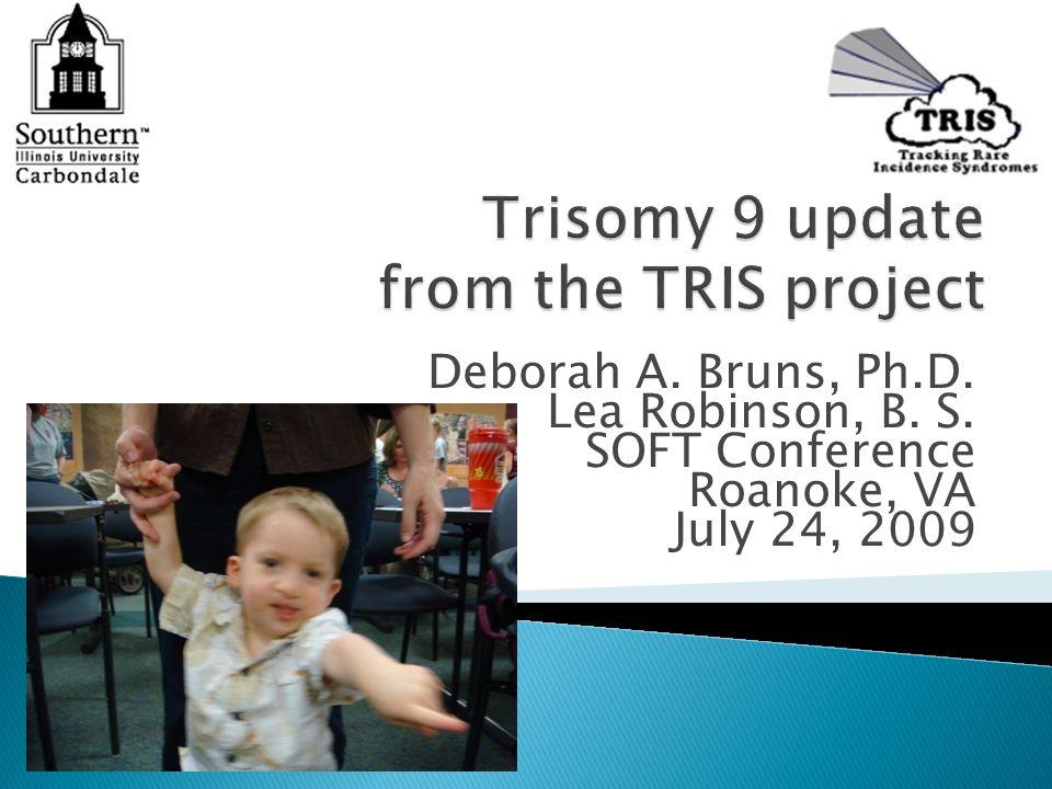 Deborah A. Bruns, Ph.D. Lea Robinson, B. S. SOFT Conference Roanoke, VA July 24, 2009