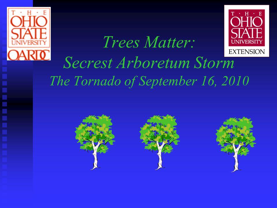 Trees Matter: Secrest Arboretum Storm The Tornado of September 16, 2010