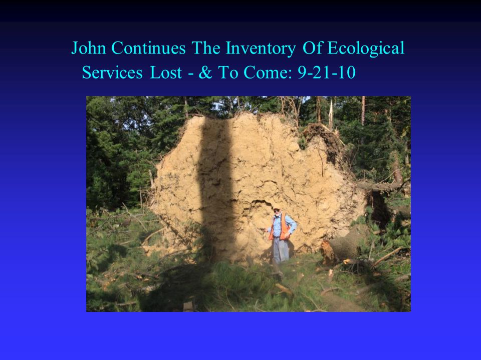 John Continues The Inventory Of Ecological Services Lost - & To Come: 9-21-10