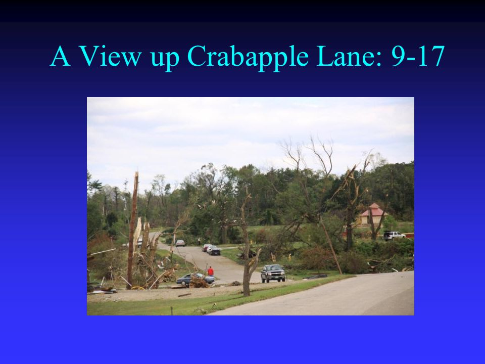 A View up Crabapple Lane: 9-17