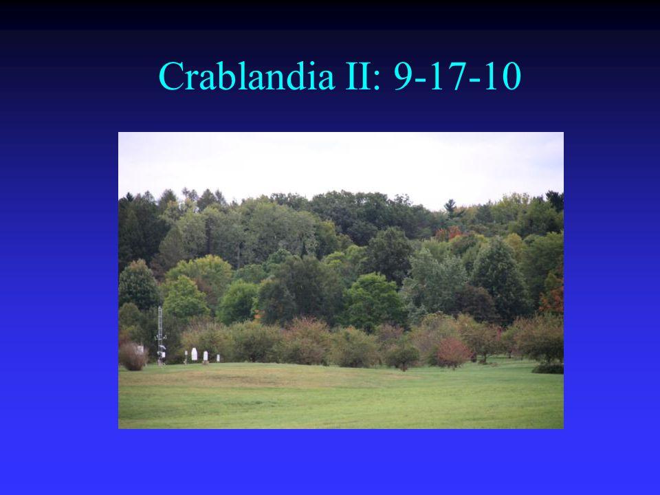 Crablandia II: 9-17-10