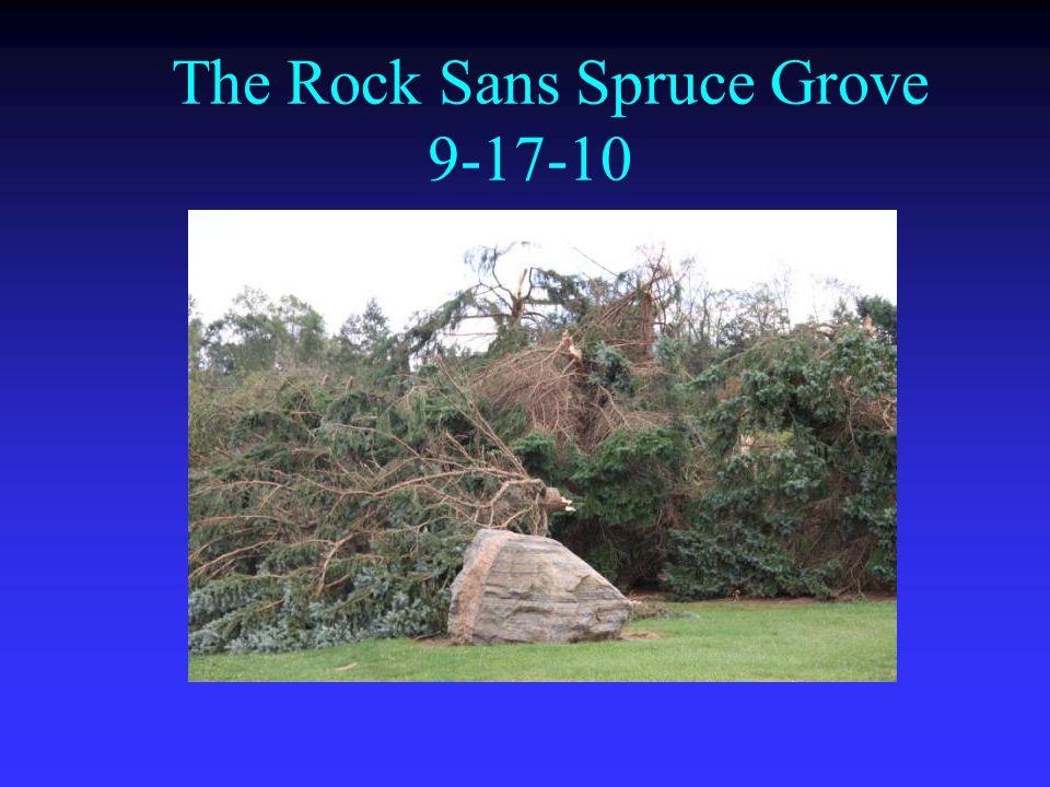 The Rock Sans Spruce Grove 9-17-10