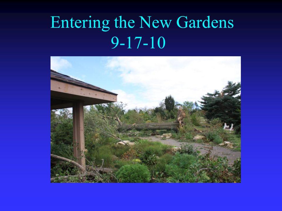 Entering the New Gardens 9-17-10