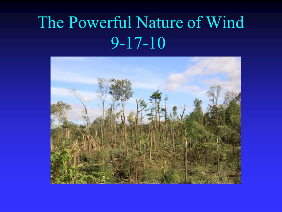 The Powerful Nature of Wind 9-17-10