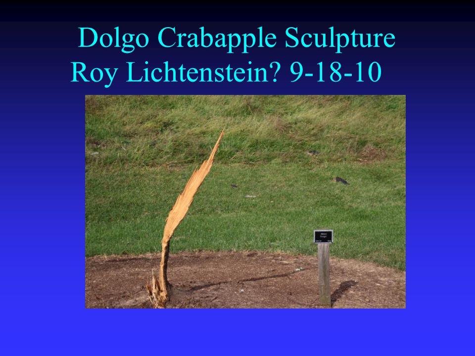 Dolgo Crabapple Sculpture Roy Lichtenstein? 9-18-10