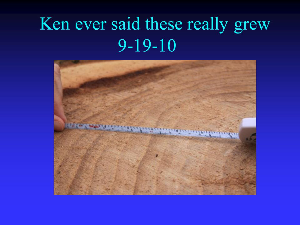 Ken ever said these really grew 9-19-10
