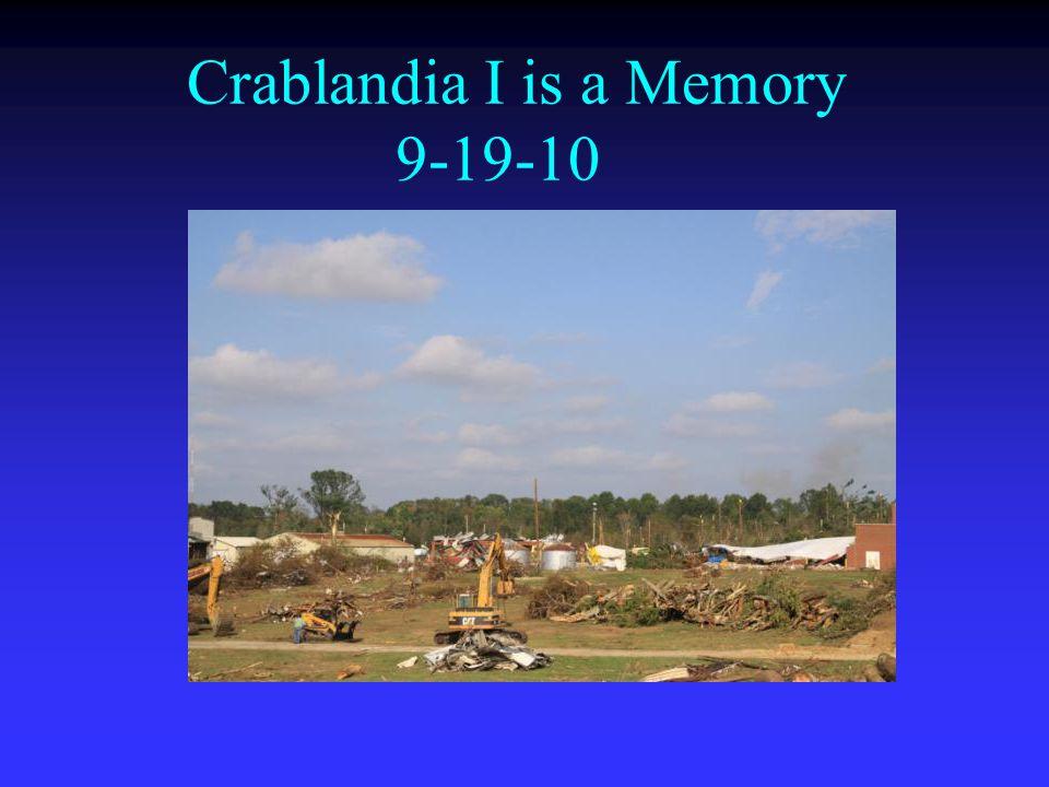 Crablandia I is a Memory 9-19-10