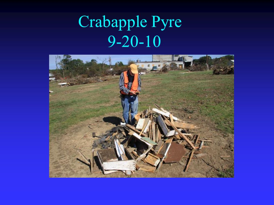 Crabapple Pyre 9-20-10