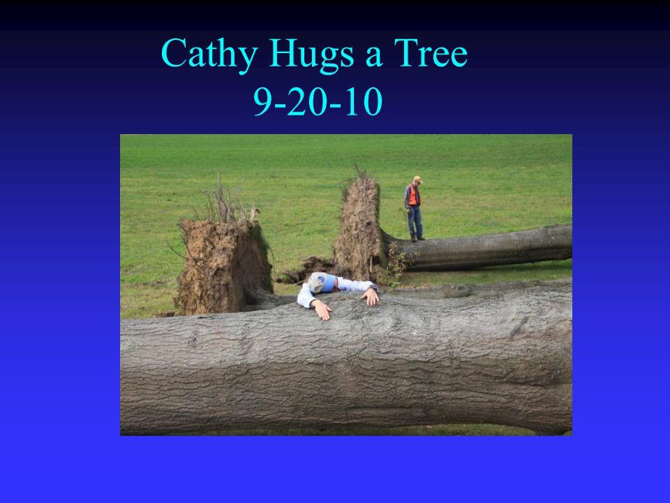 Cathy Hugs a Tree 9-20-10
