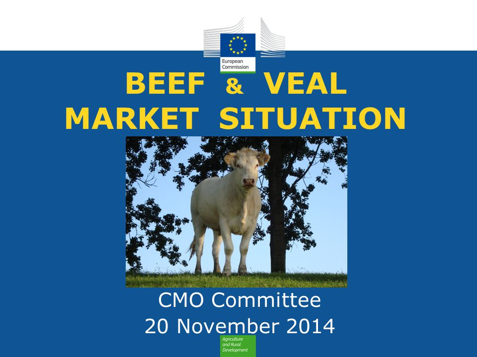 BEEF & VEAL MARKET SITUATION CMO Committee 20 November 2014