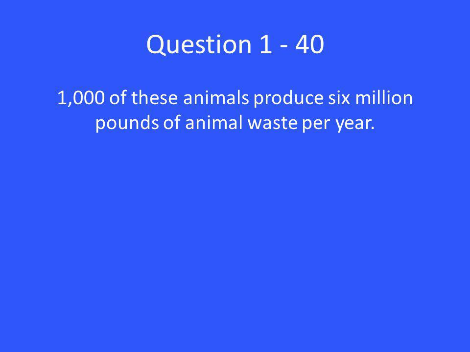 Question 1 - 40 1,000 of these animals produce six million pounds of animal waste per year.