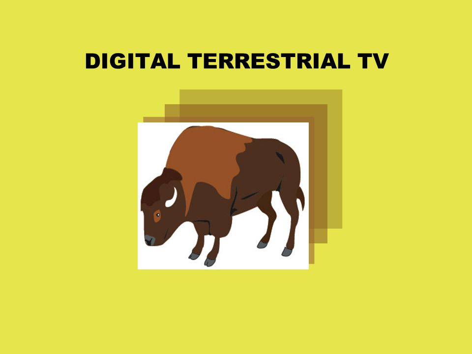DIGITAL TERRESTRIAL TV