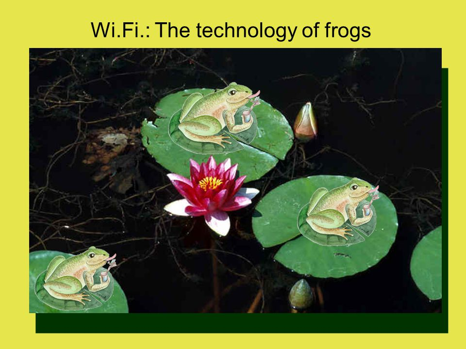 Wi.Fi.: The technology of frogs