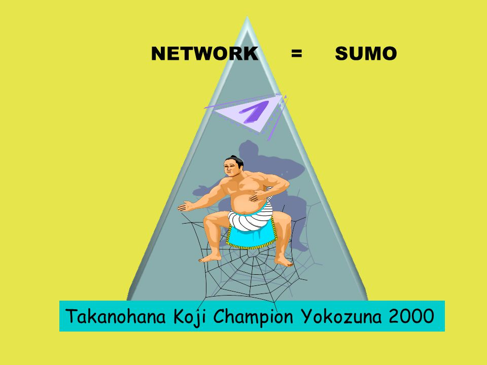 NETWORK = SUMO Takanohana Koji Champion Yokozuna 2000