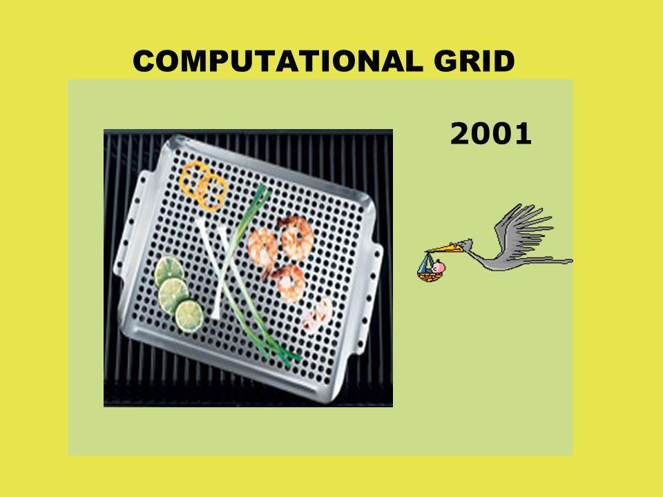 COMPUTATIONAL GRID 2001