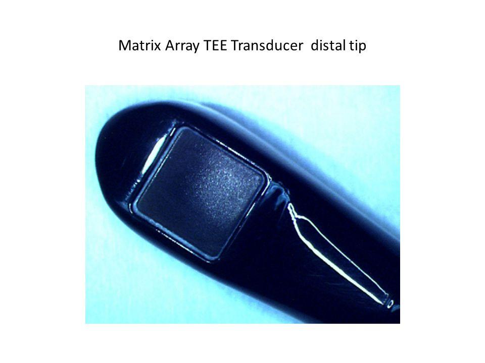 Matrix Array TEE Transducer distal tip