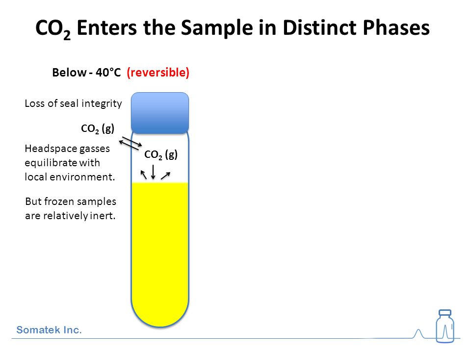 Dry ice causes a drop in pH of 1.8 ± 0.1 units.