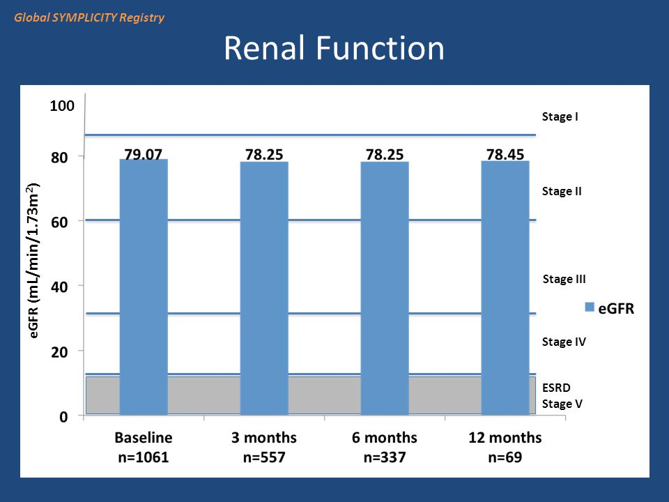 Renal Function Stage I Stage II Stage III Stage IV ESRD Stage V 100 eGFR ( mL/min/1.73m 2 ) Global SYMPLICITY Registry