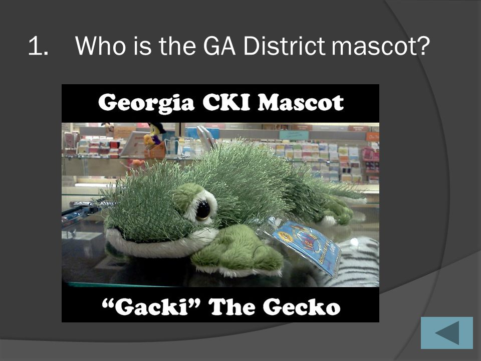 1.Who is the GA District mascot?