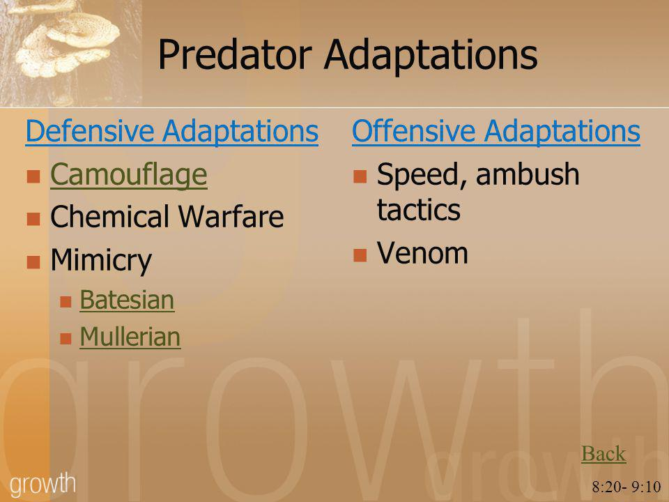 Predator Adaptations Defensive Adaptations Camouflage Chemical Warfare Mimicry Batesian Mullerian Offensive Adaptations Speed, ambush tactics Venom Back 8:20- 9:10