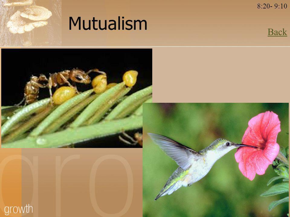 Mutualism Back 8:20- 9:10
