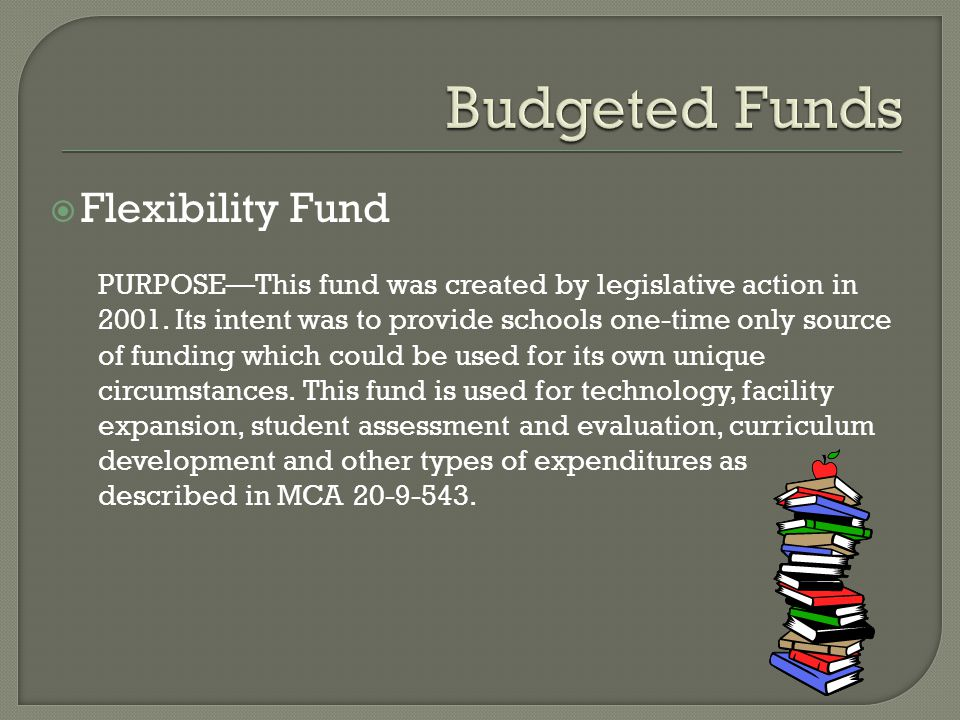  Flexibility Fund PURPOSE—This fund was created by legislative action in 2001.