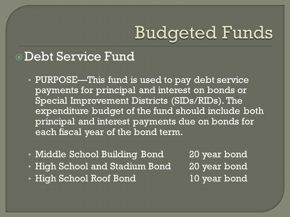  Debt Service Fund PURPOSE—This fund is used to pay debt service payments for principal and interest on bonds or Special Improvement Districts (SIDs/RIDs).