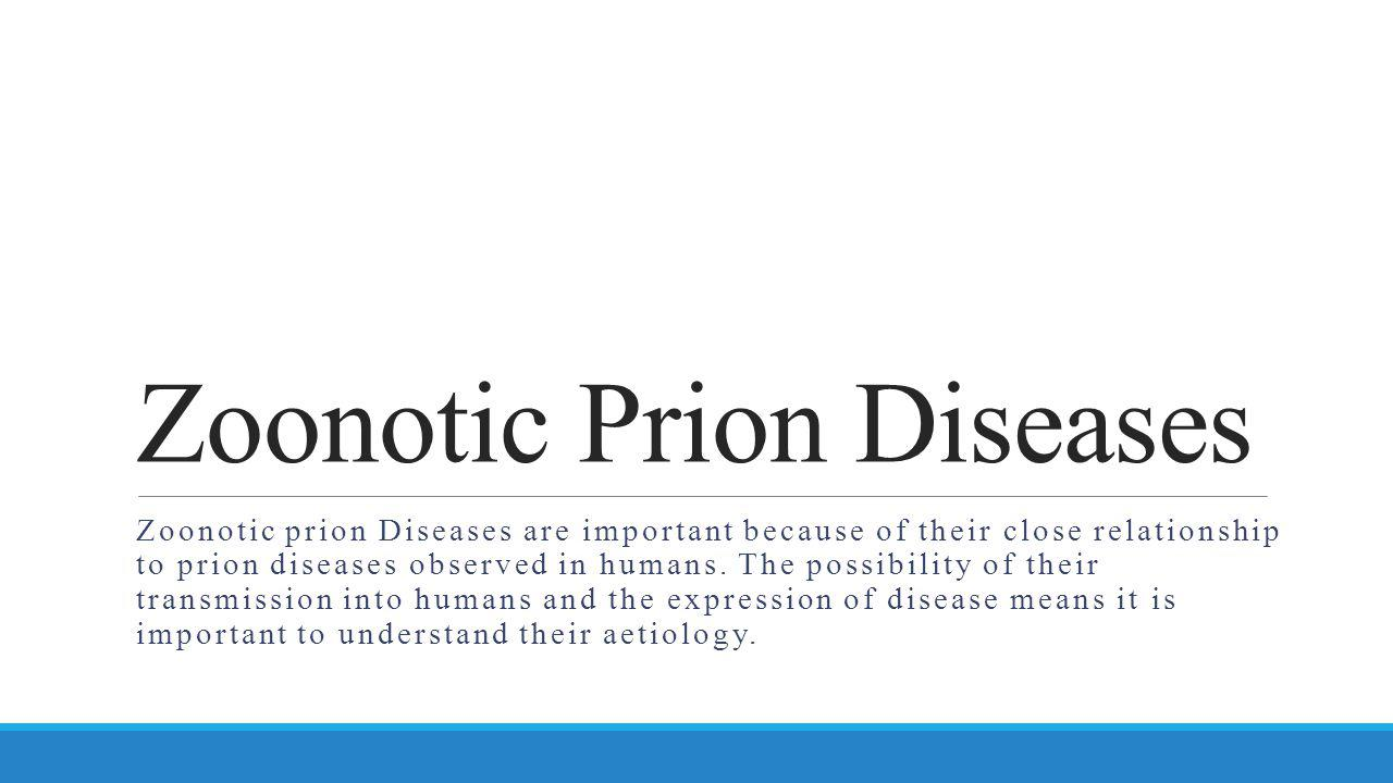 Zoonotic Prion Diseases Zoonotic prion Diseases are important because of their close relationship to prion diseases observed in humans. The possibilit