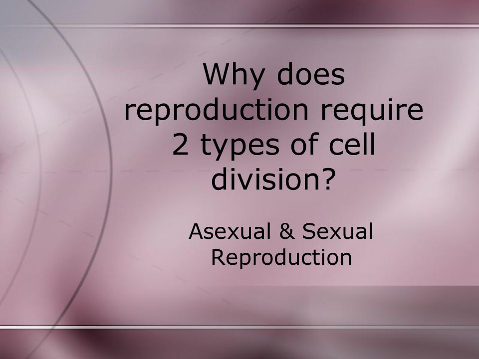 Meiosis requires 2 cell divisions: Meiosis I is called the reduction division.