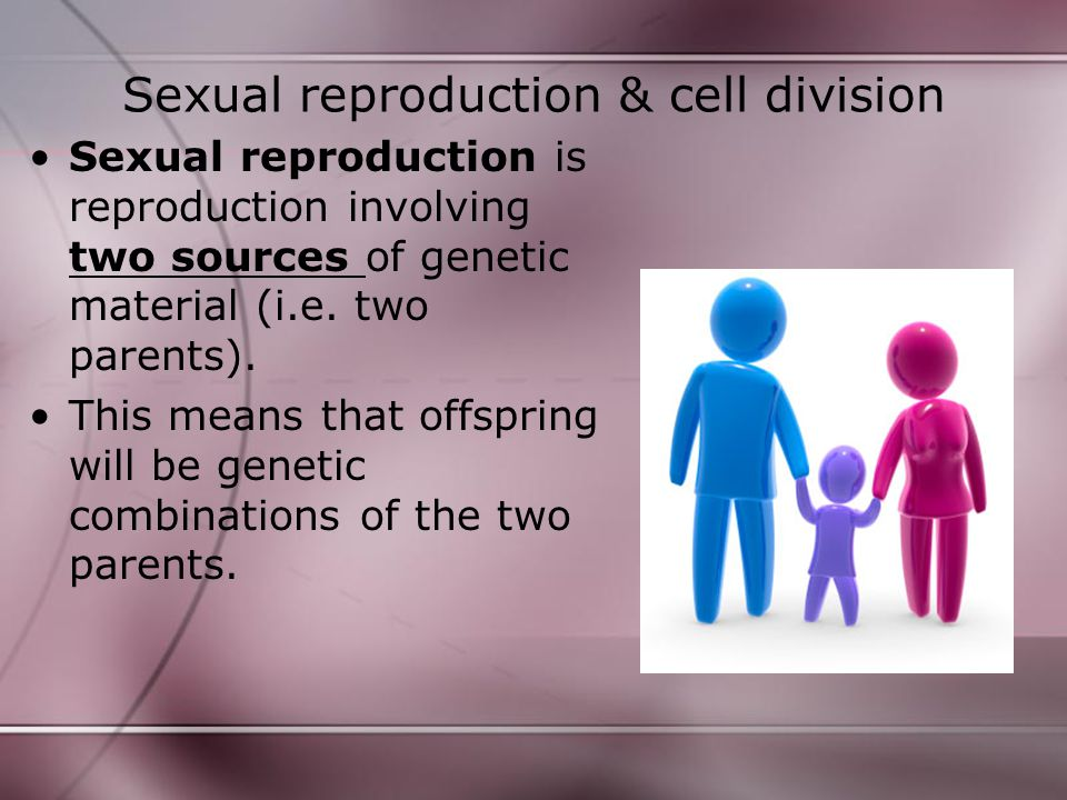 Sexual reproduction & cell division Sexual reproduction is reproduction involving two sources of genetic material (i.e. two parents). This means that